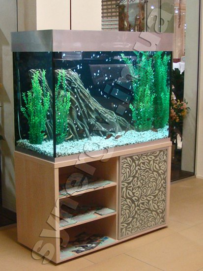 SYNERGY ltd - The freshwater aquarium
